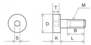 bl-6-dm-bv1